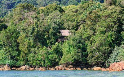 Permai Rainforest Resort : an Eco Resort in Kuching, Borneo